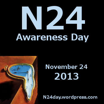 N24 Awareness Day 2013 icon